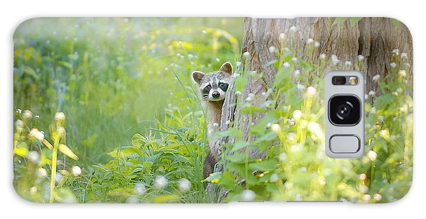 Raccoon Galaxy Case - Peek A Boo by Carrie Ann Grippo-Pike