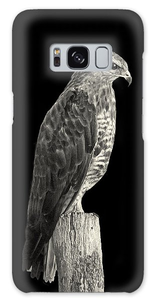 Peregrine Falcon Galaxy Case