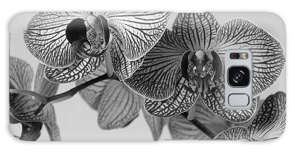 Phalaenopsis Orchid Galaxy Case