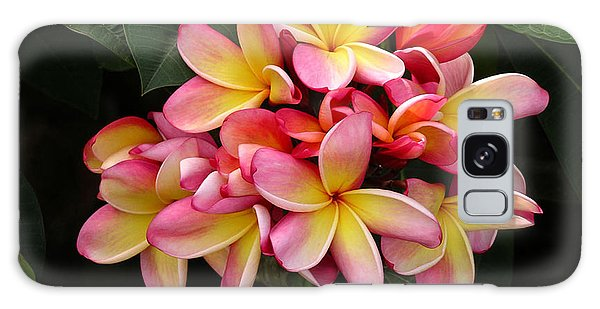Pink And Yellow Plumeria Galaxy Case
