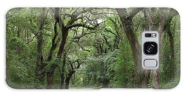 Plantation Road II Galaxy Case