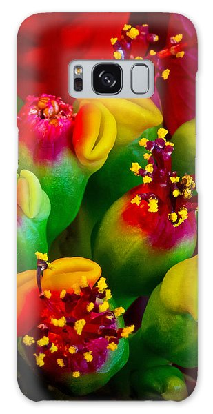 Poinsettia Flowers Galaxy Case