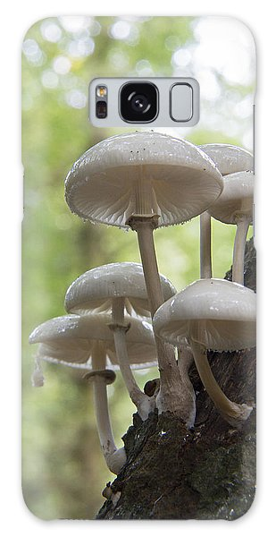 Porcelain Fungus Galaxy Case