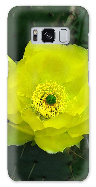 Prickly Pear Cactus Galaxy Case by William Tanneberger