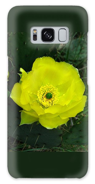 Prickly Pear Cactus Galaxy Case