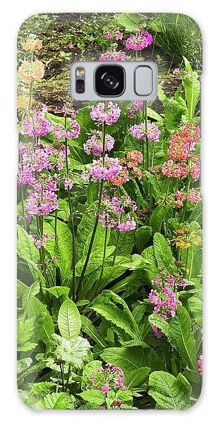 Hybrid Galaxy Case - Primula 'harlow Carr Hybrids' Flowers by Adrian Thomas