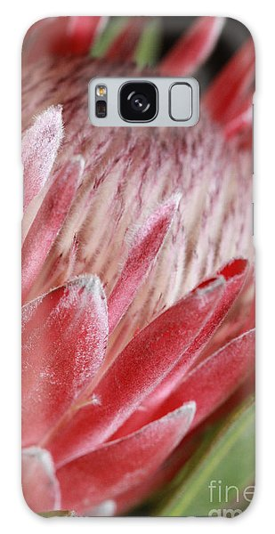 Protea All Profits Go To Hospice Of The Calumet Area Galaxy Case