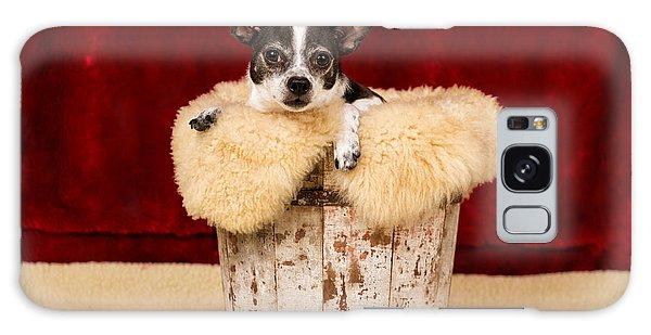 Puppy In The Bucket  Galaxy Case