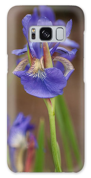 Purple Bearded Iris Galaxy Case