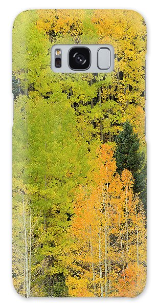 Sangre De Cristo Galaxy S8 Case - Quaking Aspens In A Fall Glow by Maresa Pryor