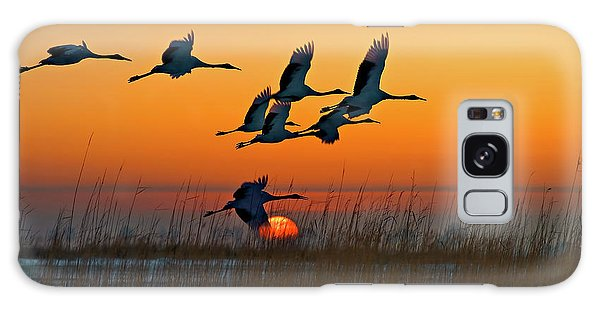 Red-crowned Crane Galaxy Case