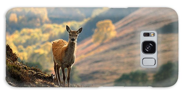 Red Deer Calf Galaxy Case