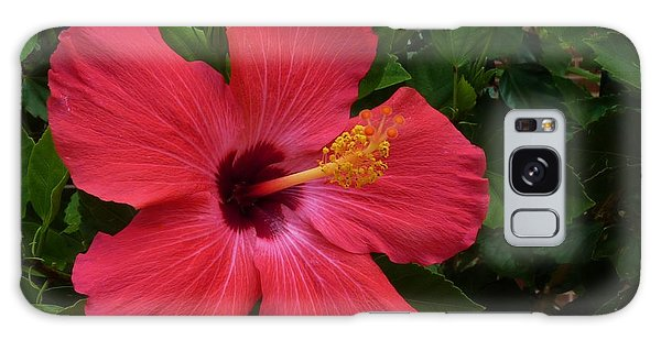 Red Hibiscus Galaxy Case by Jeanette Oberholtzer