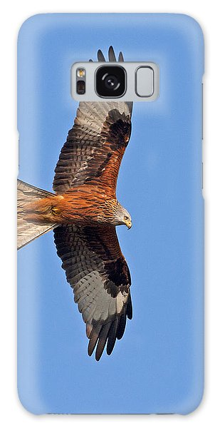 Red Kite Galaxy Case by Paul Scoullar