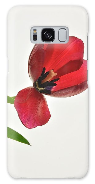 Red Transparent Tulip Galaxy Case