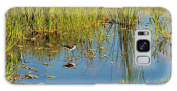 Boynton Galaxy Case - Reflection Of A Bird On Water, Boynton by Panoramic Images
