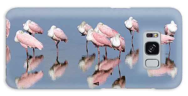 Roseate Spoonbills And Reflections Galaxy Case