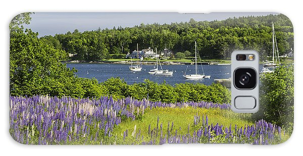 Round Pond Lupine Flowers On The Coast Of Maine Galaxy Case