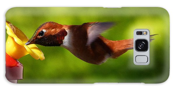 Rufous Hummingbird Galaxy Case