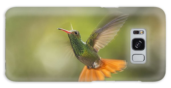 Rufous-tailed Hummingbird Galaxy Case