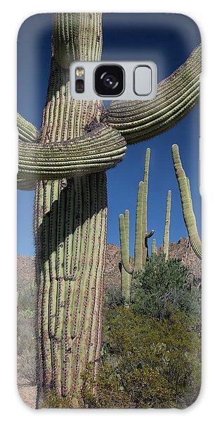 Desert Flora Galaxy Case - Saguaro Cactus (carnegiea Gigantea) by Jim West/science Photo Library