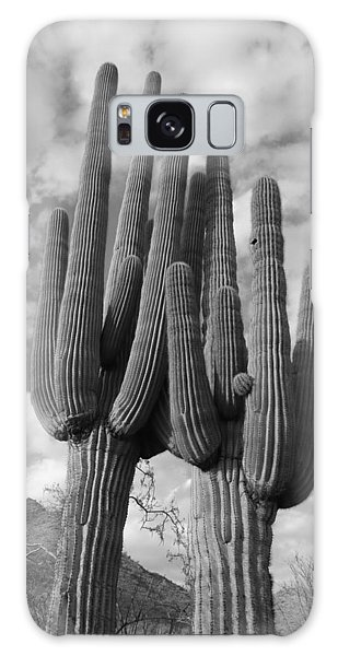Saguaro Love Galaxy Case
