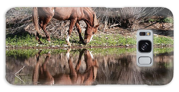 Salt River Wild Horse Galaxy Case by Tam Ryan