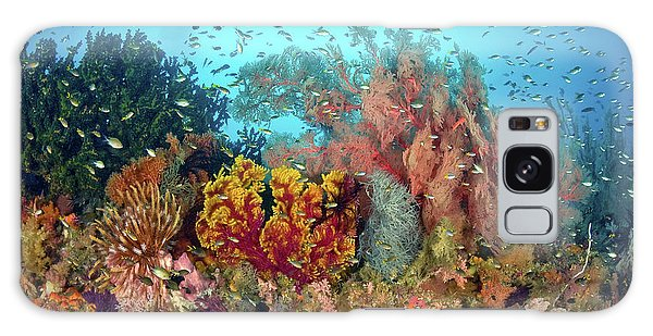 Feather Stars Galaxy Case - Scenic Of Diverse Reef Life, Misool by Jaynes Gallery