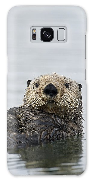 Otter Galaxy S8 Case - Sea Otter Alaska by Michael Quinton