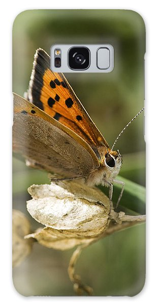 Small Copper Butterfly Galaxy Case