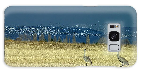 Snow Geese Invasion Galaxy Case
