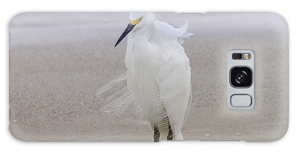 Egret Galaxy Case - Snowy Egret At The Beach by Kim Hojnacki