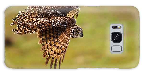 Spotted Eagle Owl In Flight Galaxy Case