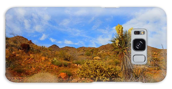 Springtime In Arizona Galaxy Case