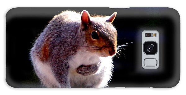 Squirrel Galaxy Case
