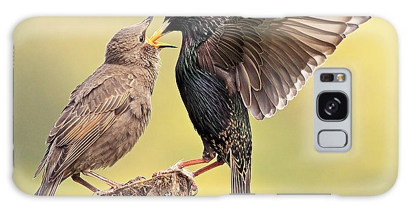 Starlings Galaxy Case