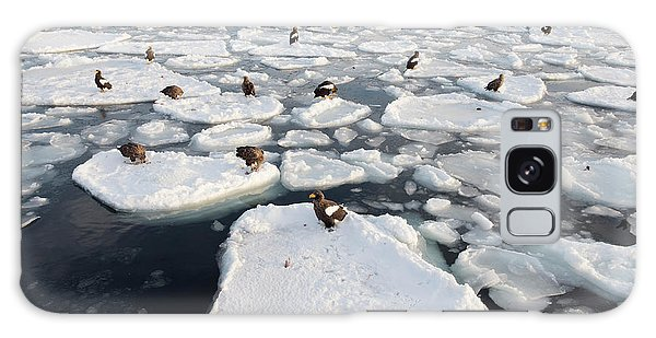 Behaviour Galaxy Case - Steller's Sea Eagles On Sea Ice by Dr P. Marazzi