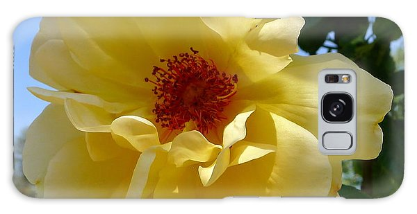 Sunny Yellow Rose Galaxy Case