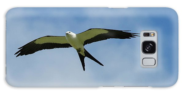 Swallow-tailed Kite In Flight Galaxy Case