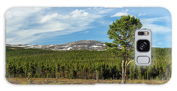 Boreal Forest Galaxy Case - Sweden, Jamtland, Valadalen Nature by Fredrik Norrsell