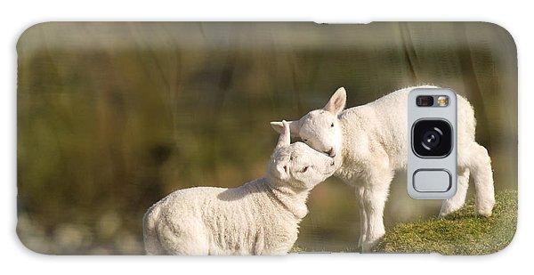 Sheep Galaxy Case - Sweet Little Lambs by Angel Ciesniarska