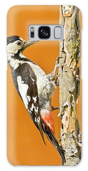 Syrian Woodpecker (dendrocopos Syriacus) Galaxy Case