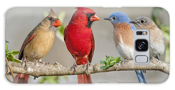 The Bluebirds Meet The Redbirds Galaxy Case