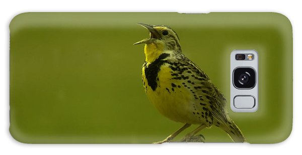 The Meadowlark Sings Galaxy Case by Jeff Swan