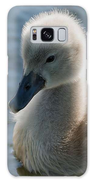 The Ugly Duckling Galaxy Case