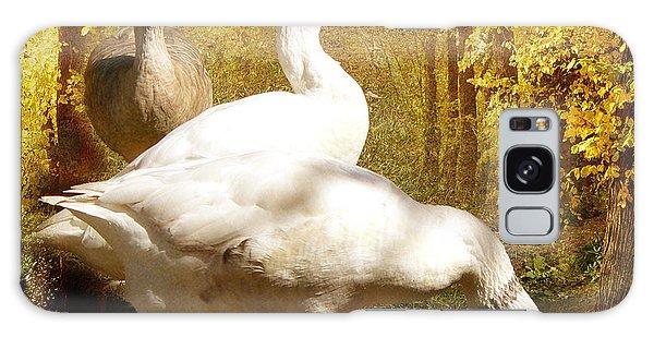 Three Geese A Grazing Galaxy Case