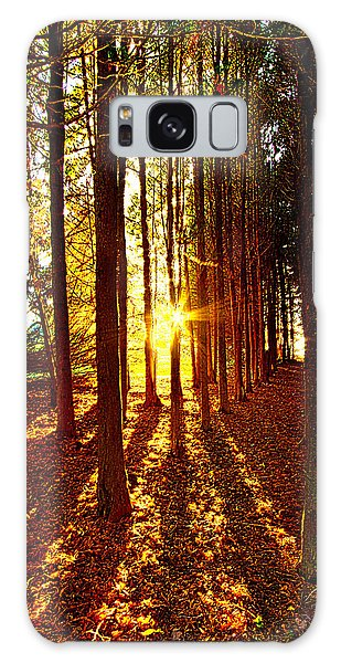 Picnic Table Galaxy Case - Through The Pines by Phil Koch