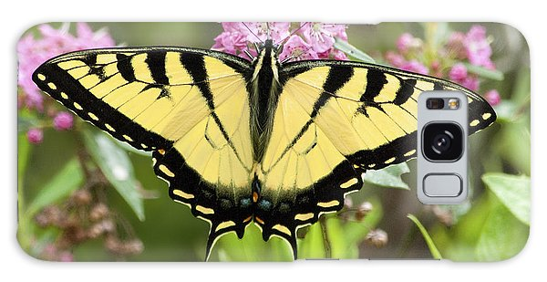 Galaxy Case - Tiger Swallowtail Butterfly On Milkweed Flowers by A Gurmankin