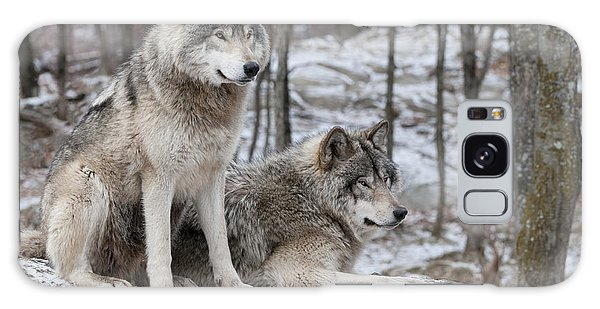 Timber Wolf Pair In Forest Galaxy Case