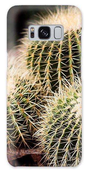 Triple Cactus Galaxy Case